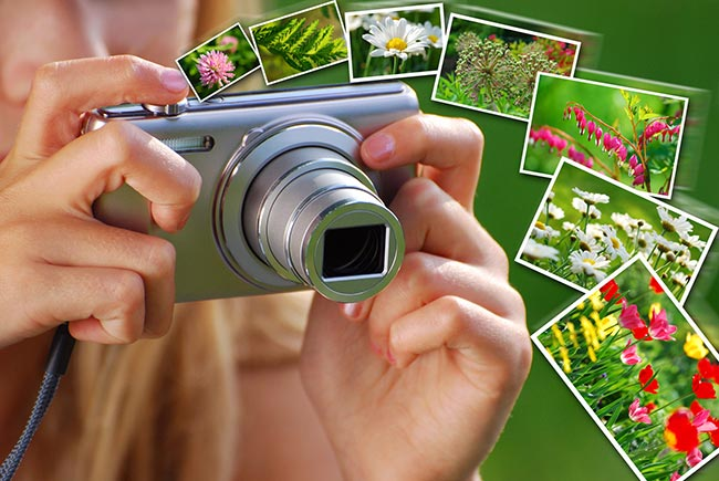 Guide to Getting the Most from Online Photo Printing