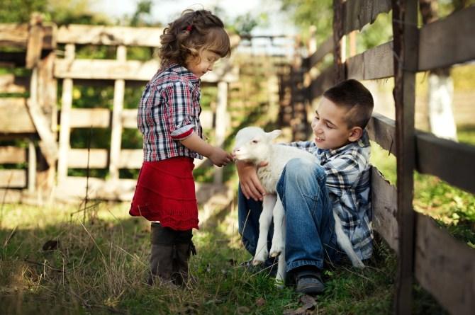 Photography Ideas - Baby Animals