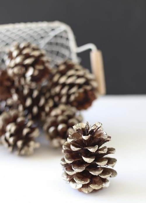 Easy Christmas Crafts - Pinecones