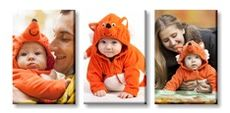 Canvas Print Wall Displays - (3) 50 x 75cm