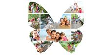 Silhouette Image Collage - Butterfly